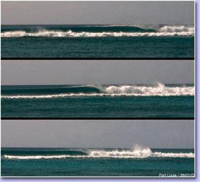 Surf Trip Guadeloupe : découvrez un véritable paradis tropical pour le surf