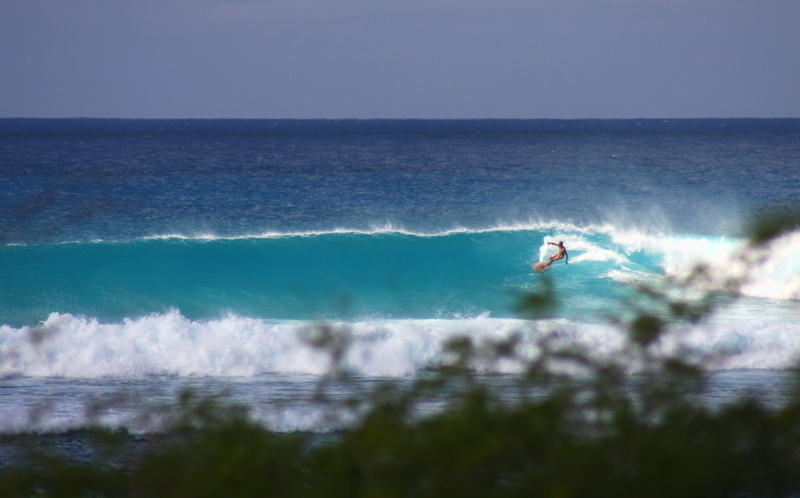 Allamanda Surf Camp, Guadeloupe's premier surf camp, the ideal base for lessons and surf trips.
